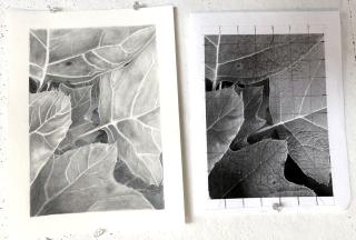 Abstractdrawingfoliage5